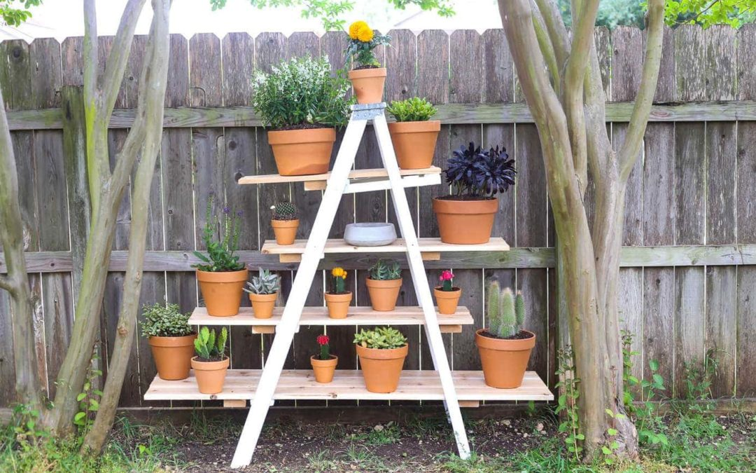Step up your garden
